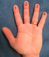 graphic of hand with numbered fingers for first position violin