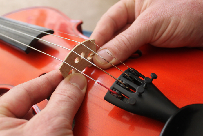 image showing how to position the bridge feet on a violin, viola, cello or upright bass