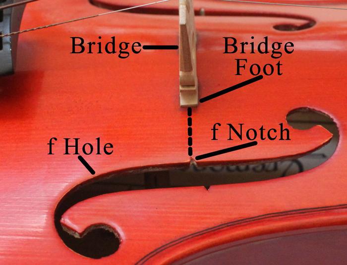 Position A Violin Viola Fiddle Cello Or Bass Bridge